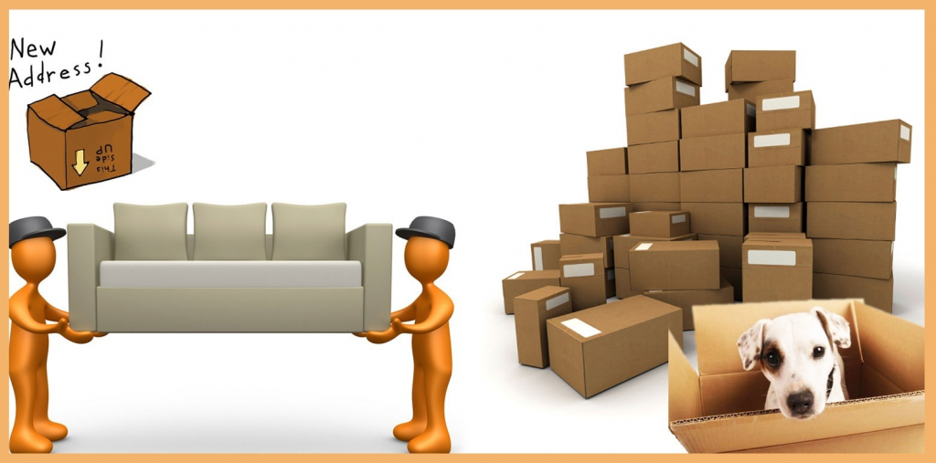Packers and Movers Team.